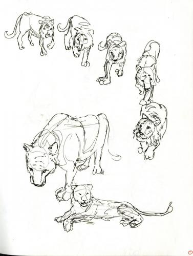 Sketchbook Page - Lions